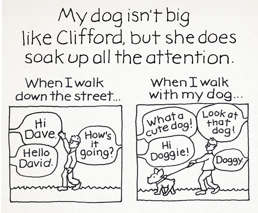 Judy-Newman-Story-of-Clifford-DV